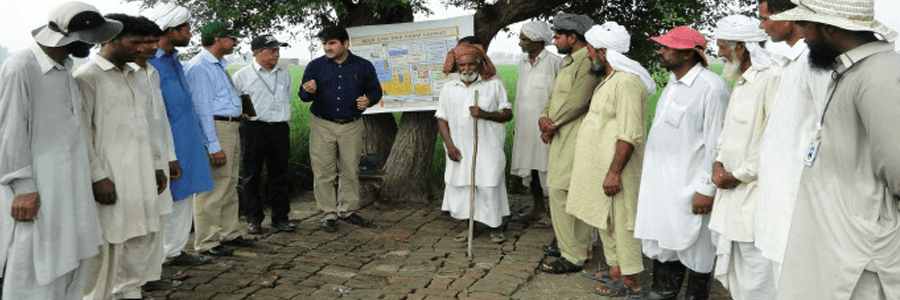 Working towards a better future: Engro and GIZ train 11,000+ rice farmers